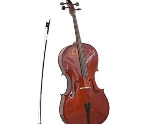 Don_new_violon